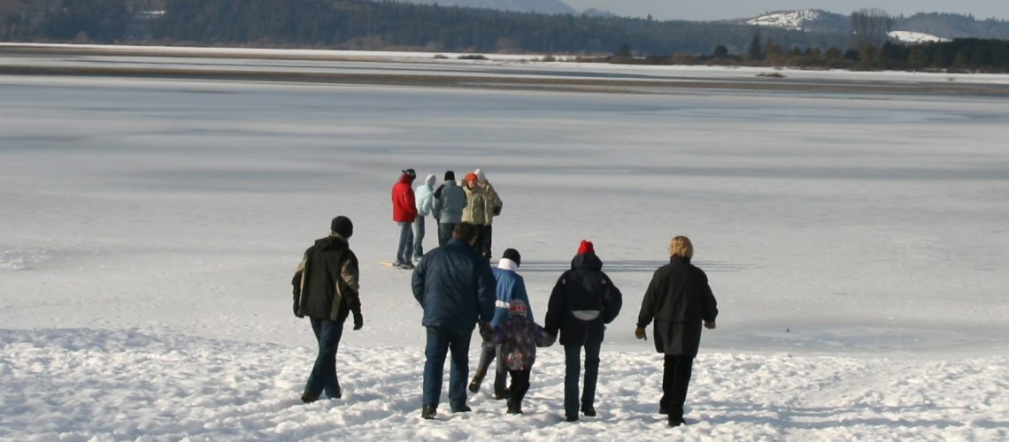 WS_Family walks in distance on snow
